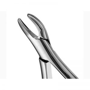 101 – Hull Upper & Lower Premolar Forceps