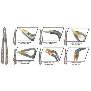 Apical Extraction Forceps Set